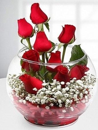 Kırmızı Mutluluk fanusta 9 kırmızı gül  Afyon çiçek siparişi sitesi