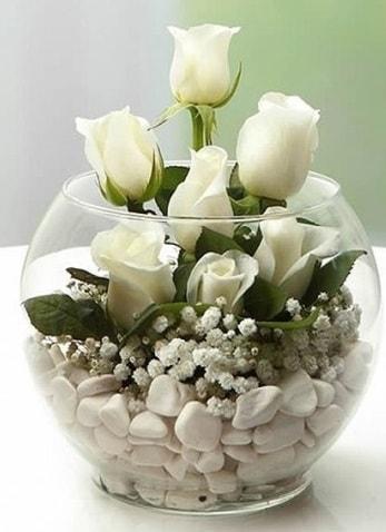 Beyaz Mutluluk 9 beyaz gül fanusta  Afyon çiçek siparişi sitesi