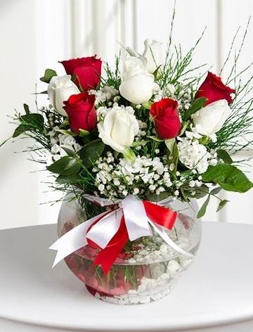 Aşk Küresi  5 beyaz 5 kırmızı gül fanusta  Afyon internetten çiçek satışı