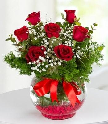 fanus Vazoda 7 Gül  Afyon çiçek , çiçekçi , çiçekçilik