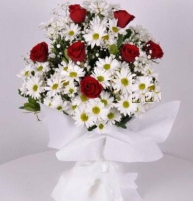 7 adet kırmızı gül ve papatyalar krizantem  Afyon internetten çiçek satışı