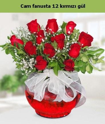Cam içerisinde 12 adet kırmızı gül  Afyon internetten çiçek satışı