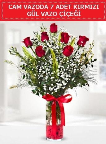 Cam vazoda 7 adet kırmızı gül çiçeği  Afyon çiçek gönderme sitemiz güvenlidir