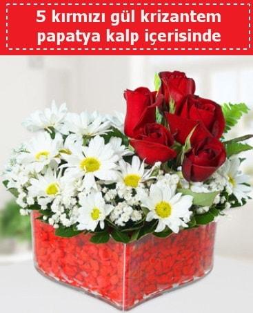 mika kalp içerisinde 5 kırmızı gül papatya  Afyon çiçek gönderme