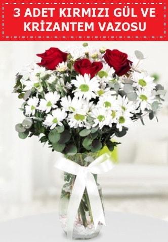 3 kırmızı gül ve camda krizantem çiçekleri  Afyon çiçek gönderme