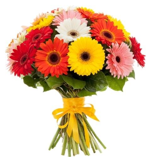Gerbera demeti buketi  Afyon çiçek satışı